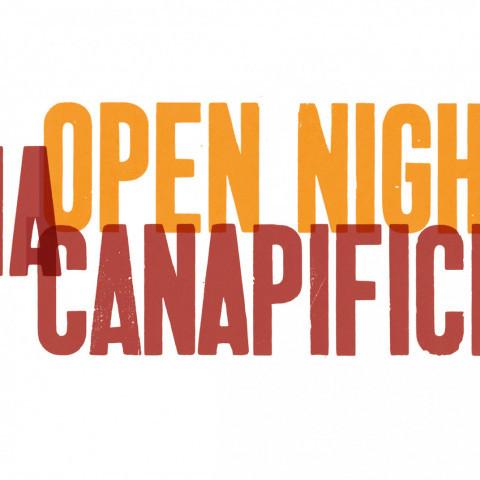 OpenNight_ViaC_large.JPG